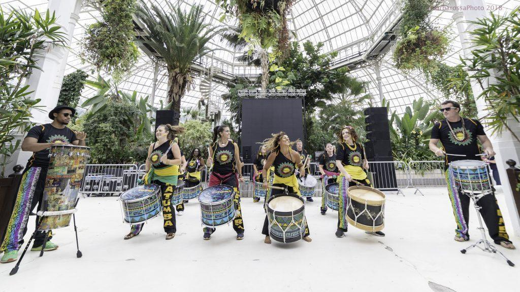 Katumba at the Palm House 2107018-1-10