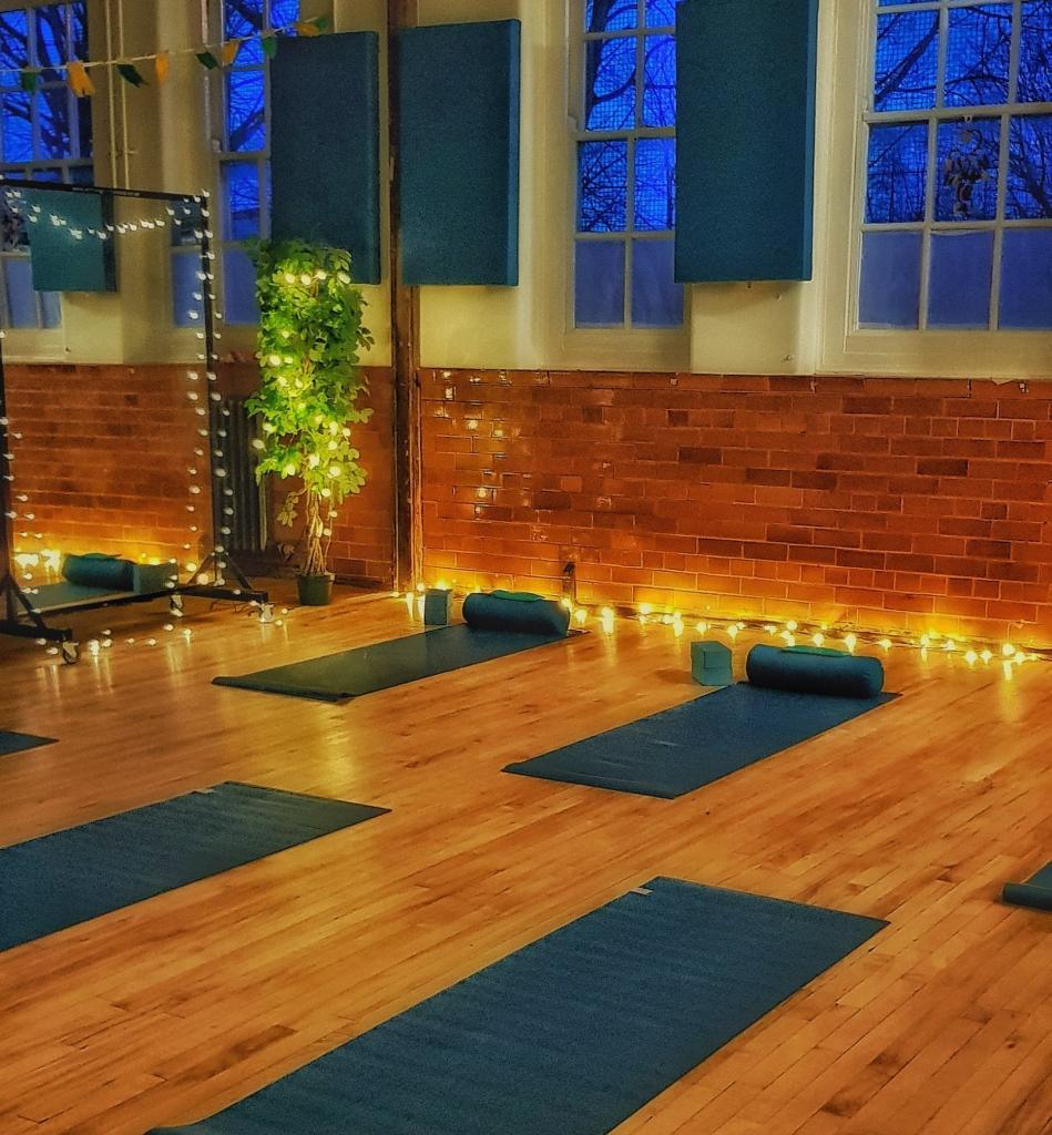 mats yoga fairy light plant